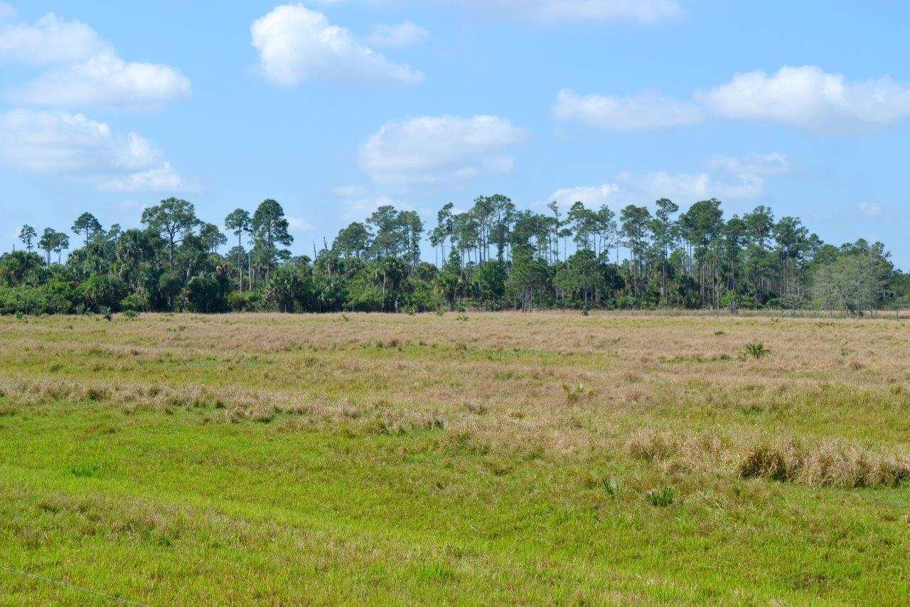 Sold Old Ranch In Port Saint Lucie Florida Saunders