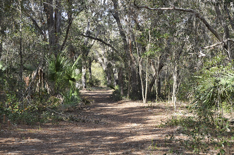 driving directions  hwy 44 to cr 439 go north to deer park ave  go to cul de sac to sign  bear hammock game haven in eustis fl   saunders real estate  rh   saundersrealestate