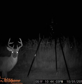 Refuge Tract Game Cam