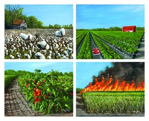 """Photo of 2014 """"Agricultural Heritage"""" Stephen Koury"""