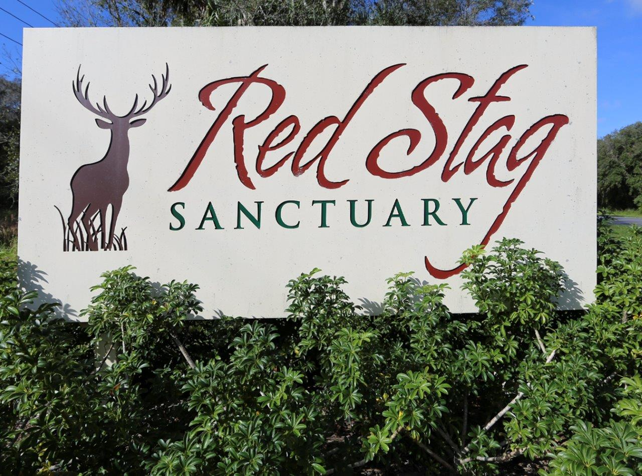 SOLD: Smith Ranch North Red Stag in Okeechobee, Florida
