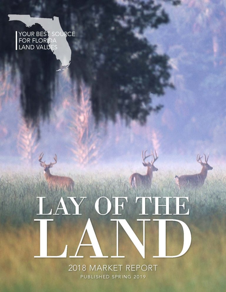 Cover of the 2018 Lay of the Land Market Report