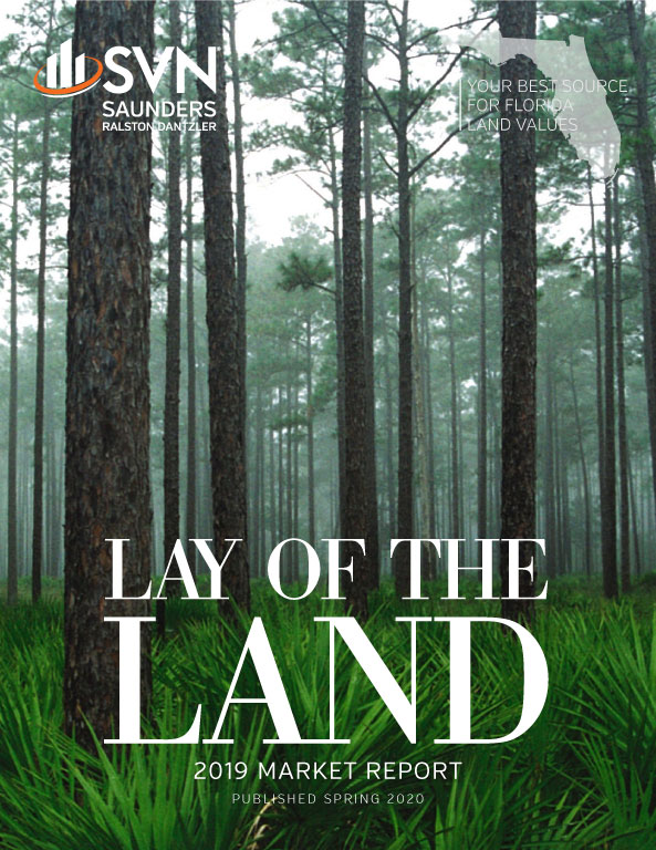 Cover of the 2019 Lay of the Land Market Report