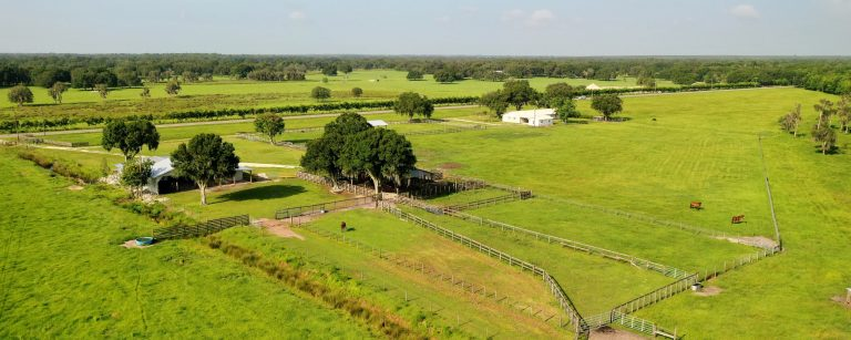Photo of Boggy Branch Ranch Sold for $2,316,800