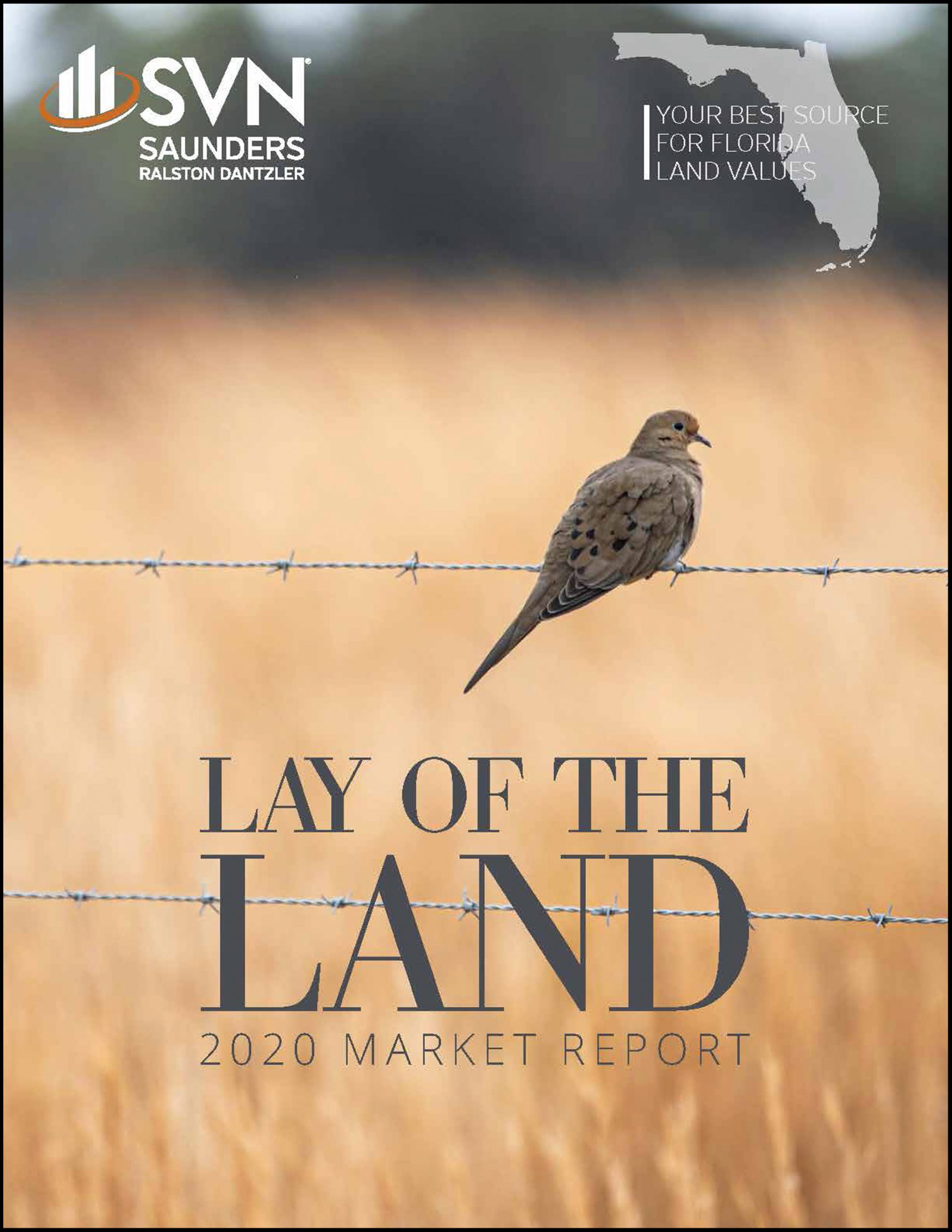 Lay of the Land Market Report 2020