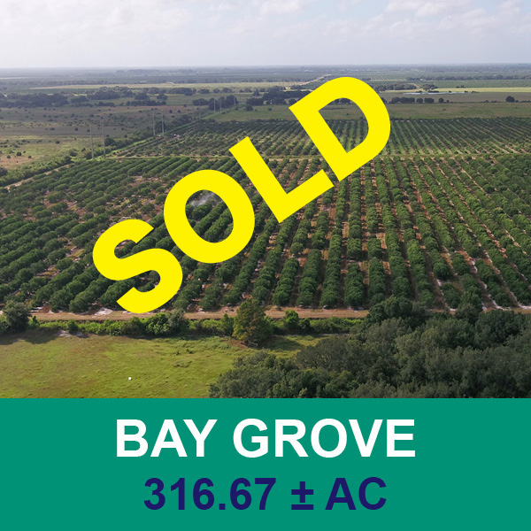 Sold at real estate auction - Bay Grove - Florida Ag