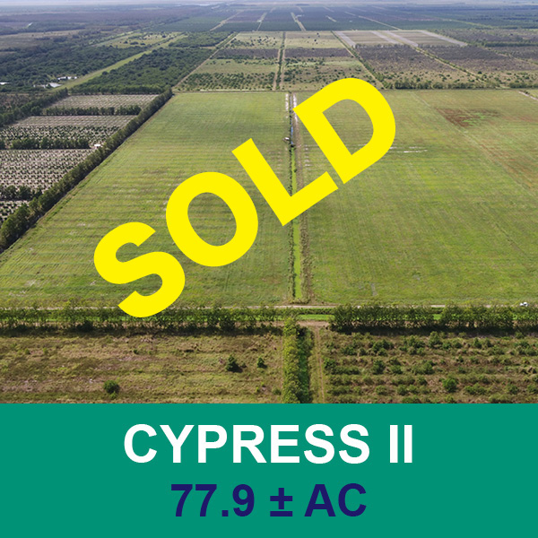 Sold at real estate auction Cypress II - Florida Ag
