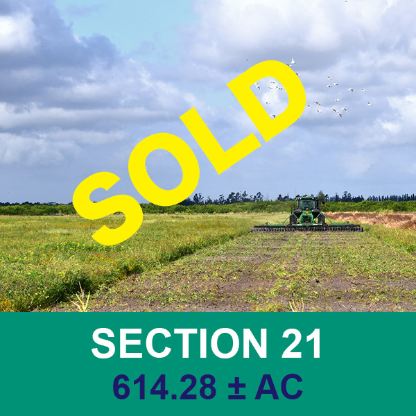 Sold at real estate auction - Section 21 - Florida Ag
