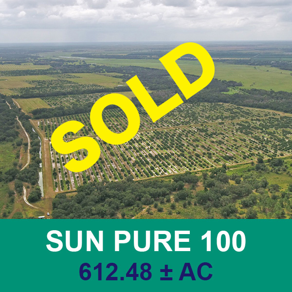 Sold at real estate auction - Sun Pure 100 - Florida Ag